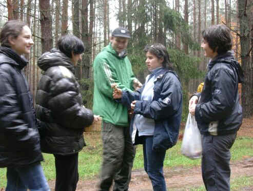 Borowiki - guided mushroom gathering tours in the west of Poland